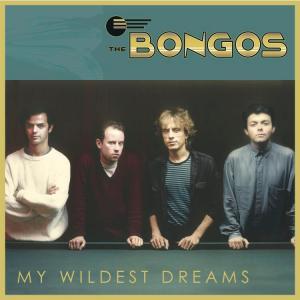 Bongos My Wildest Dreams